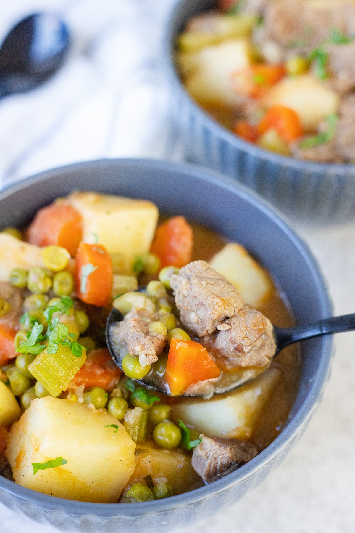 A lot of healthy ingredients in this lamb stew recipe.
