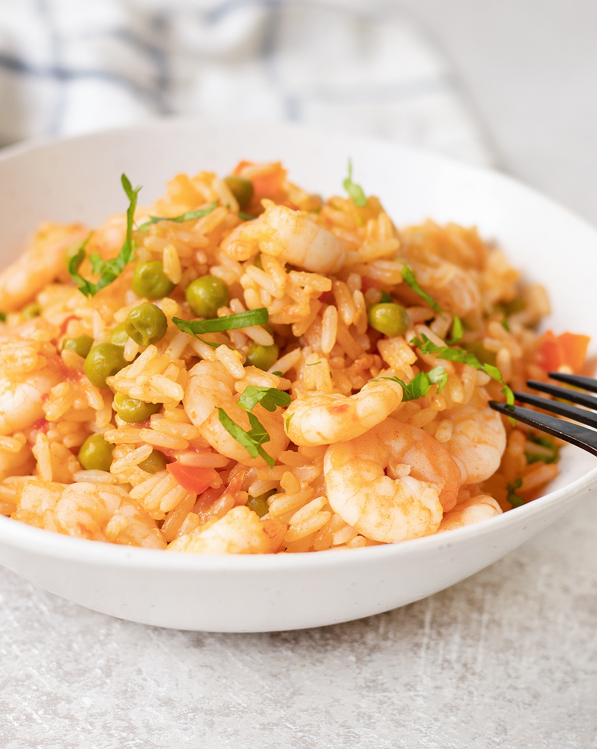 Prawns and Rice in a plate